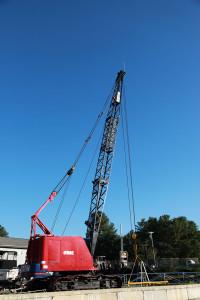 Crane-600x900