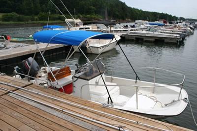 17′ Whaler Montauk